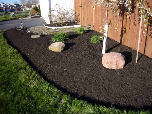 Spring clean up and flower bed preparation Georgetown