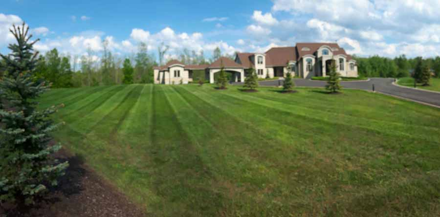 Spring Lawn Stripping Services in Campellville